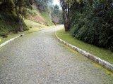 Terreno Samambaia Petrópolis
