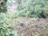 Terreno Centro Petrópolis