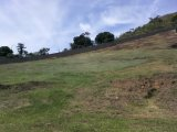 Terreno Carangola Petrópolis